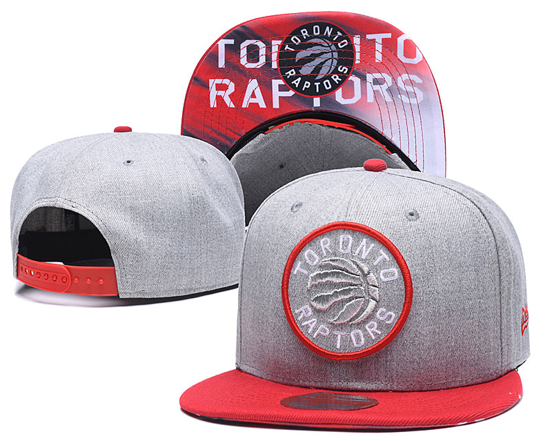 Raptors Team Logo Gray Adjustable Hat LH