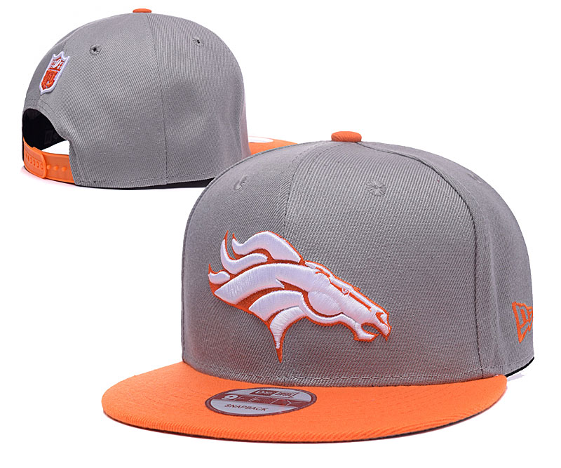 Broncos Team Logo Gray Adjustable Hat LH